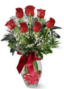 Yozgat internetten çiçek siparişi  7 adet kirmizi gül cam vazo yada mika vazoda