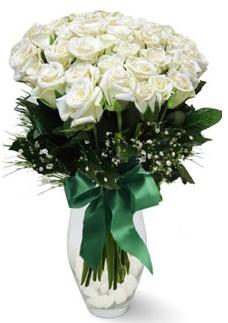 19 adet essiz kalitede beyaz gül  Yozgat çiçekçiler