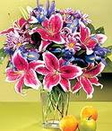 Yozgat çiçek mağazası , çiçekçi adresleri  Sevgi bahçesi Özel  bir tercih
