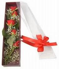 kutu içinde 5 adet kirmizi gül  Yozgat internetten çiçek siparişi