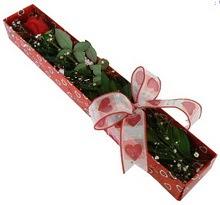 Tek kirmizi gül kutu içerisinde  Yozgat güvenli kaliteli hızlı çiçek