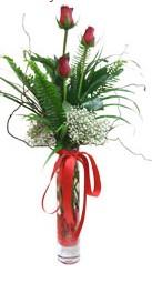 Yozgat çiçek siparişi sitesi  3 adet kirmizi gül vazo içerisinde