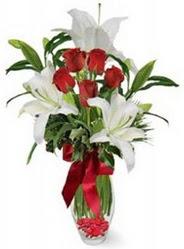 Yozgat çiçek siparişi vermek  5 adet kirmizi gül ve 3 kandil kazablanka