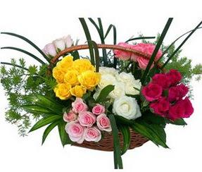 Yozgat ucuz çiçek gönder  35 adet rengarenk güllerden sepet tanzimi