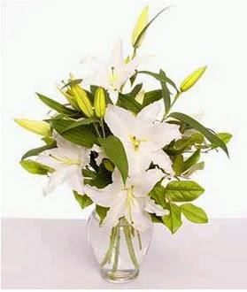 Yozgat çiçek gönderme  2 dal cazablanca vazo çiçeği