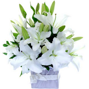 Yozgat çiçek yolla  2 dal cazablanca vazo çiçeği