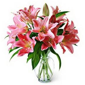 3 dal kazablanka görsel vazosu  Yozgat internetten çiçek siparişi