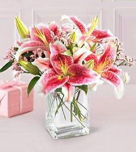2 dal kazablanka görsel vazosu  Yozgat çiçek siparişi sitesi