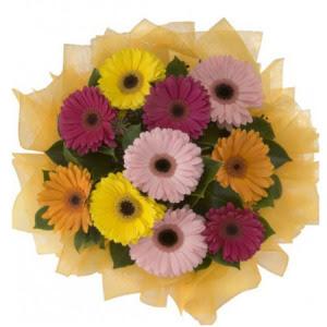 Yozgat İnternetten çiçek siparişi  11 adet karışık gerbera çiçeği buketi