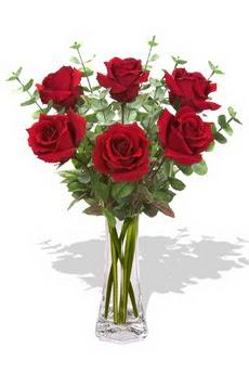 Yozgat çiçekçi mağazası  6 kırmızı gül vazosu