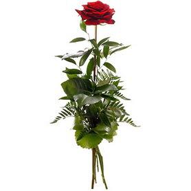 Yozgat online çiçekçi , çiçek siparişi  1 adet kırmızı gülden buket