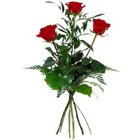 Yozgat uluslararası çiçek gönderme  3 adet kırmızı gülden buket