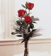 Yozgat internetten çiçek satışı  Vazoda 3 adet güzel gül