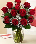 Sevgilime hediye 9 adet 1.ci kalite gül  Yozgat anneler günü çiçek yolla