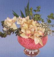 Yozgat çiçek mağazası , çiçekçi adresleri  Dal orkide kalite bir hediye