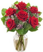 Kız arkadaşıma hediye 6 kırmızı gül  Yozgat internetten çiçek siparişi