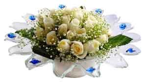 Yozgat çiçek online çiçek siparişi  11 adet Beyaz güller özel cam tanzim