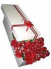 Yozgat çiçekçi telefonları  11 adet 1.kalite magnum güller
