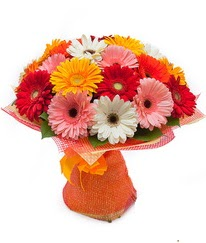 Renkli gerbera buketi  Yozgat anneler günü çiçek yolla