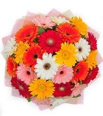 15 adet renkli gerbera buketi  Yozgat yurtiçi ve yurtdışı çiçek siparişi