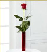 Vazo içerisinde 1 adet kırmızı gül  Yozgat internetten çiçek siparişi