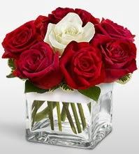 Tek aşkımsın çiçeği 8 kırmızı 1 beyaz gül  Yozgat uluslararası çiçek gönderme
