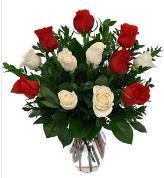 Vazo içerisinde 6 kırmızı 6 beyaz gül  Yozgat hediye çiçek yolla