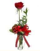 vazo içerisinde 1 adet kırmızı gül  Yozgat çiçekçi telefonları