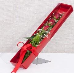 Kutu içerisinde 3 adet kırmızı gül  Yozgat online çiçek gönderme sipariş