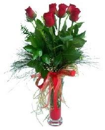 vazo içerisinde 5 kırmızı gül  Yozgat güvenli kaliteli hızlı çiçek
