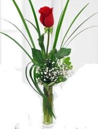 Cam içerisinde 1 kırmızı gül  Yozgat çiçek gönderme sitemiz güvenlidir