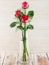 Cam içerisinde 3 kırmızı gül  Yozgat çiçek satışı