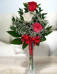 Camda 2 kırmızı 1 beyaz gül  Yozgat ucuz çiçek gönder