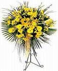 Yozgat yurtiçi ve yurtdışı çiçek siparişi  Sari kazablanka Ferforje