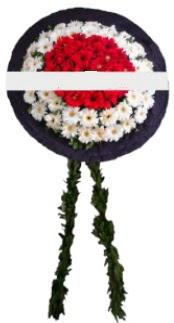 mozele çiçeği  Yozgat hediye sevgilime hediye çiçek