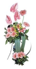 Yozgat güvenli kaliteli hızlı çiçek  Pembe Antoryum Harikalar Rüyasi
