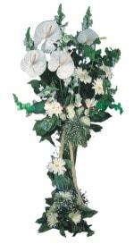 Yozgat çiçek mağazası , çiçekçi adresleri  antoryumlarin büyüsü özel