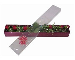 Yozgat anneler günü çiçek yolla   6 adet kirmizi gül kutu içinde