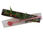 Yozgat hediye çiçek yolla  3 adet gül.kutu yaldizlidir.