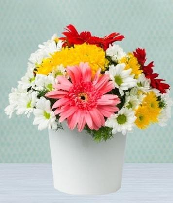 Seramik Vazoda Gelbera ve Papatya  Yozgat çiçek gönderme
