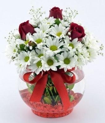 Fanusta 3 Gül ve Papatya  Yozgat internetten çiçek satışı