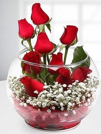 Kırmızı Mutluluk fanusta 9 kırmızı gül  Yozgat çiçek siparişi sitesi
