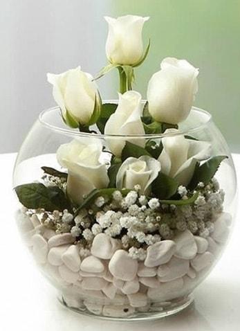 Beyaz Mutluluk 9 beyaz gül fanusta  Yozgat çiçek siparişi sitesi
