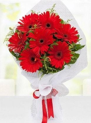 Kırmızı Gelbera Buketi  Yozgat internetten çiçek siparişi