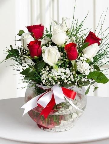 Aşk Küresi  5 beyaz 5 kırmızı gül fanusta  Yozgat internetten çiçek satışı
