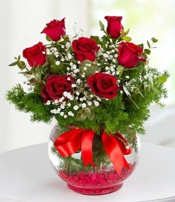 fanus Vazoda 7 Gül  Yozgat çiçek , çiçekçi , çiçekçilik