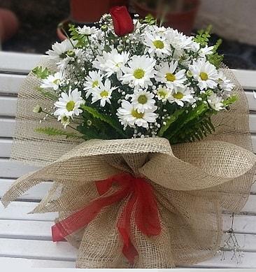 Papatya 1 adet kırmızı gül buketi  Yozgat çiçekçiler
