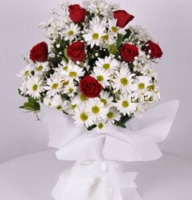 7 adet kırmızı gül ve papatyalar krizantem  Yozgat internetten çiçek satışı