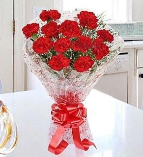 12 adet kırmızı karanfil buketi  Yozgat İnternetten çiçek siparişi