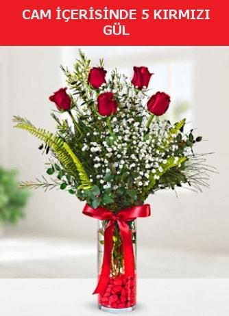Cam içerisinde 5 adet kırmızı gül  Yozgat çiçek siparişi sitesi